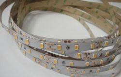 5630 - 60 LED/м 24V  бяла светодиодна лента